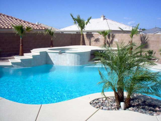 Free Form Pools Photo Gallery
